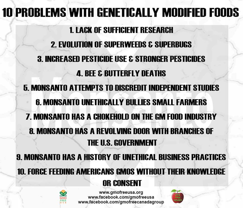 10 Problems with Genetically Modified Foods