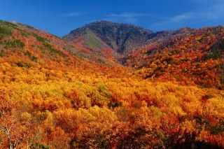 Fall Colors in Tennessee