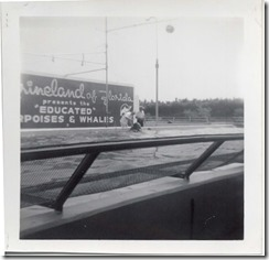 June 1964 Marineland of Florida 1